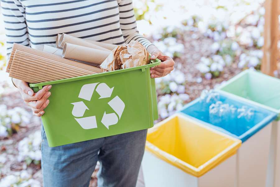 image of recycling bins and sorting